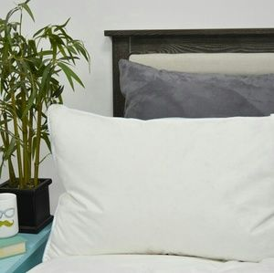 Set of 2 Pacific Coast Touch of Down Pillow QUEEN